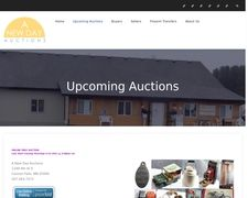 Anewdayauctions
