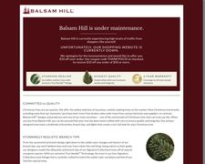 Balsam Hill Brands