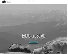 Bristlecone Studio