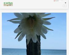 Cactus Kingdom