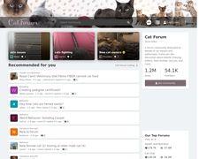 Cat Forum