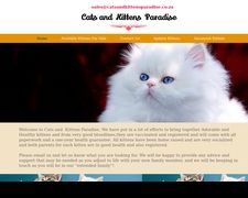 Cats and Kitten Paradise