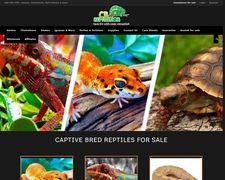 CB Reptile