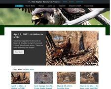 Decorah Bald Eagles | Raptor Resource Project