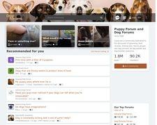 Dog Forums