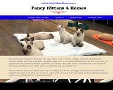 Fancy Kittens 4 Homes