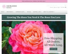 Heirloom Roses