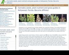 Hollywoodcannabis.cf
