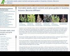 Surprisecannabis.ml